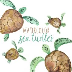Watercolor Sea Turtles Illustration, Sea Turtle clipart, Turtle clip art, Tropical Animal Clipart, M Watercolor Clipart, Watercolor Sea, Watercolor Paintings, Baby Sea Turtles, Tropical Animals, Turtle Pattern, Corel Painter, Clip Art, Acrylic Painting Tutorials