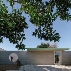 Located within the garden of an existing property, the low-slung structure encompasses 35 square metres and is hidden by a wall that runs its full width. Rafael Solano, Costa, Modern Architecture, Outdoor Decor, Plants, Houses, Home Decor, Cities, Architecture