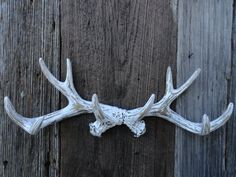Wall Antlers Deer Antler Rack Taxidermy Rustic Wall Decor Shabby Chic Antler Wall Hook White Distressed Coat Rack Hook Jewelry Organizer