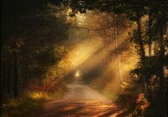 Autumn Time Photo in Album Landscpe of Poland - Photographer: Paweł