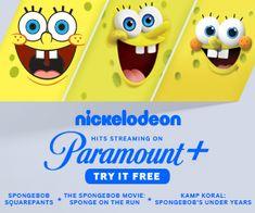 Where to Watch Spongebob Squarepants