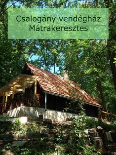 Erdei vendégház a Mátrában.