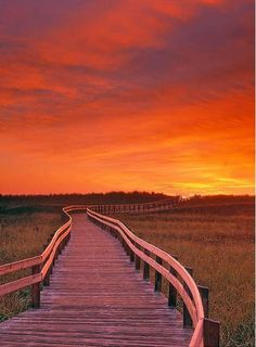 Boardwalk Along The Salt Marsh (Green), Kouchibouguac National Park, New Brunswick, Canada Poster Print x East Coast Travel, East Coast Road Trip, Parc National, National Parks, Oh The Places You'll Go, Places To Visit, New Brunswick Canada, Canadian Travel, Atlantic Canada