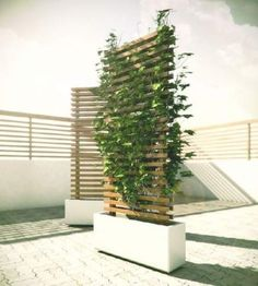 Mobile Vine Wall to Block Neighbour You are in the right place about Garden Types plants Here we off Backyard Privacy, Backyard Patio, Backyard Landscaping, Privacy Trellis, Privacy Fences, Privacy Planter, Diy Pergola, Modern Pergola, Fence Planters