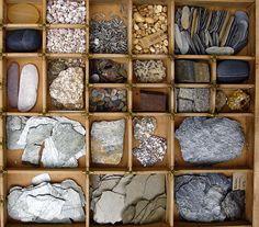 Love these natural materials   sorting   organization   Reggio Emilia   per explorar textures i formes