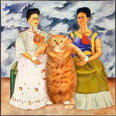 Frida- Cats, Memes, New Mexico : Photo
