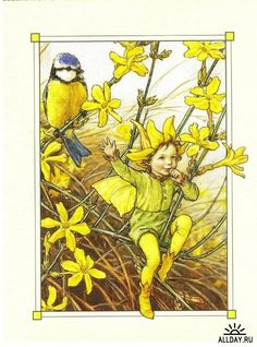 The Winter Jasmine Fairy. Vintage flower fairy art by Cicely Mary Barker. Taken from 'Flower Fairies of the Winter'. Click through to the link to see the accompanying poem. Cicely Mary Barker, Fairy Land, Fairy Tales, Fairy Pictures, Vintage Fairies, All Nature, Beautiful Fairies, Flower Fairies, Fantasy Illustration