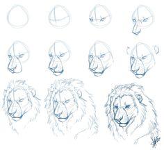 Drawing Tips animal drawings Pencil Art Drawings, Realistic Drawings, Art Drawings Sketches, Cartoon Drawings, Easy Drawings, Disney Drawings, Simple Animal Drawings, Drawing Techniques, Drawing Tips