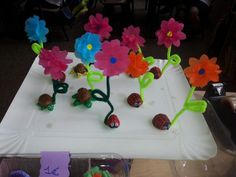 Flores clip para fotos pequeñas o notas con base tortuga y mariquita hechas con media nuez.