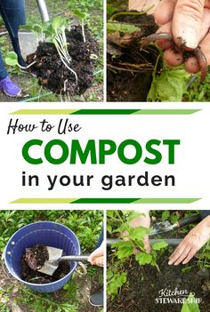 Using compost in you