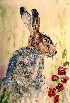 Morena Artina.     Hare and Poppies Beautiful Giclee Print of  Watercolour and Ink Painting on Watercolour Paper