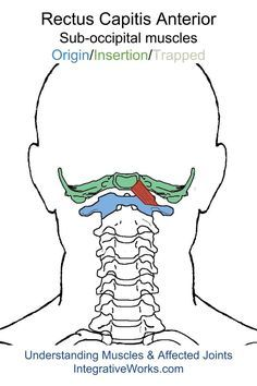http://integrativeworks.com/understanding-trigger-points-pain-in-the-base-of-the-head-with-earache/