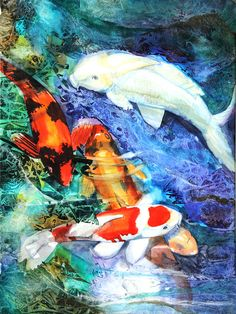 Koi - Artist: Patricia Allingham Carlson Medium: Painting