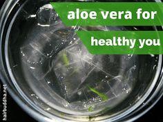 aloe vera for healthy u