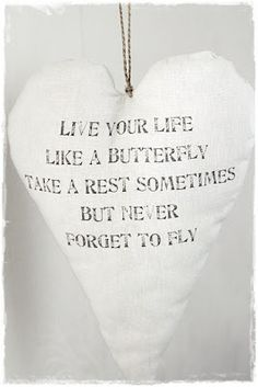 Live your life like a butterfly