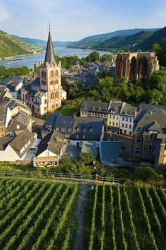 Bacharach, Rhine River Valley in Germany.