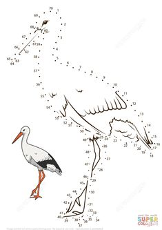Stork dot to dot from Birds category. Select from 32012 printable crafts of cartoons, nature, animals, Bible and many more. Dots Game, English Teaching Materials, Educational Games For Kids, Bird Crafts, Montessori Activities, Free Printable Coloring Pages, Dot Painting, Fun Math, Coloring Books