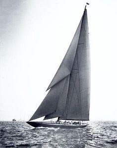 Le Shamrock V 1930 © Rosenfeld Collection