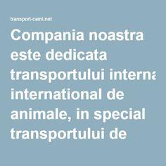 Compania noastra este dedicata transportului international de animale, in special transportului de caini la nivel european. Transportation