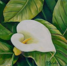 Calla Lilly by PatDeHart on Etsy, $6.00