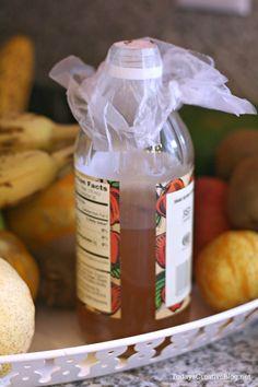 how to get rid of fruit flies | TodaysCreativeBlog.net