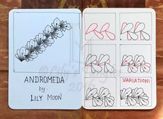 Here is my new pattern: Andromeda. I hope you like it.     Here are the stepouts and variations:       ( If this pattern has been presente...