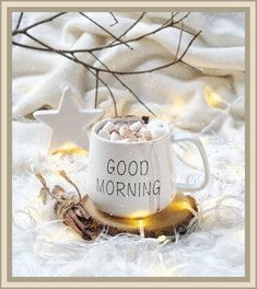 Good Morning Funny Pictures, Cute Good Morning Quotes, Good Morning Messages, Good Morning Greetings, Morning Prayers, Morning Images, Morning Sayings, Morning Pics, Good Morning Winter