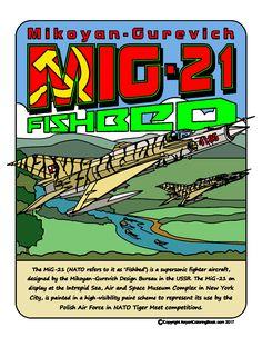 MIG-21 colored1