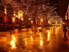 Downtown Denver Colorado--took a horse drawn carriage ride through this amazing city and will always remember the beautiful lights that ran through the middle of the streets