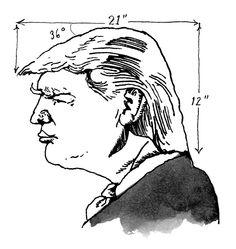 A new series of Donald Trump cartoons, by Barry Blitt.