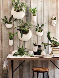 West Elm + Shane Powers ceramic wall planters via Poppytalk