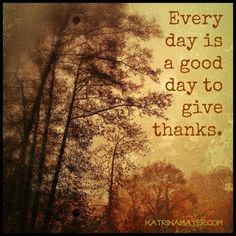 Every Day is a Good Day to Give Thanks ~~❤~~ Please give a forever home to a furry friend. They will be thankful for their lifetime~~