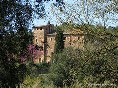 Senderismo Paseos Fotografía Cicloturismo: Paseo - Safari Fotográfico - Parc de la Pollancred...