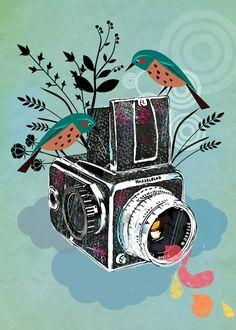 Vintage Hasselblad Camera illustration by Elisandra