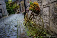 Old Bicycle: Photo by Photographer Ben Huybrechts