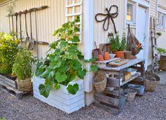 Kanelia ja kardemummaa: Nurkat hyötykäyttöön Beach Gardens, Outdoor Gardens, Backyard Makeover, Edible Garden, Summer Garden, Dream Garden, Garden Planning, Garden Beds, Garden Projects