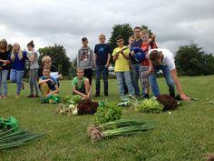 Das Gemüse muss jetzt irgendwie gerecht verteilt werden. Picnic Blanket, Outdoor Blanket, Harvest Season, Picnic Quilt