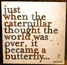 justo cuando la oruga penso el mundo se convirtio en mariposa....