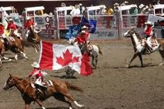 <b>Attractions Canada</b>-<b>Calgary Stampede</b> Happy Canada Day, City Scene, Calgary, Cow, Funny Pictures, Flag, Animals, True North, Equestrian