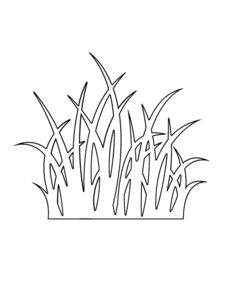 Grass Outline Coloring Pages Color Luna Grass Drawing, Line Drawing, Kirigami, Tree Stencil, Stencils, Cityscape Drawing, Simple Flower Drawing, Color Plan, Online Coloring