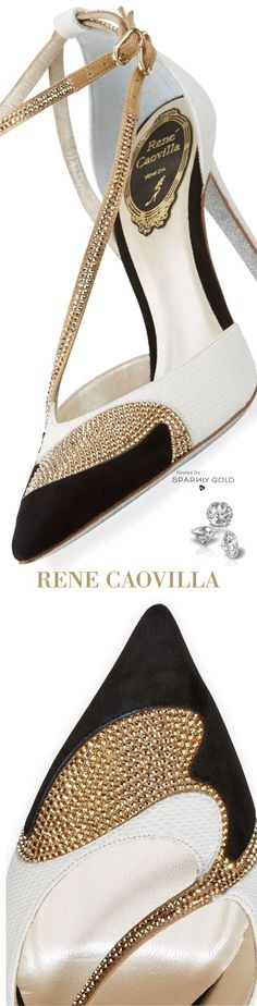 Rene Coavilla Shoes are to die for. Classic pointed shoe with elegance but definitely a head turner