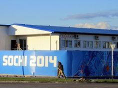 Sochi 2014: how Russia's Winter Olympics have failed on sustainability.