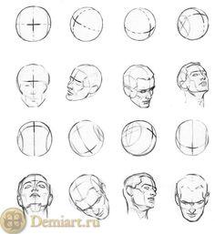 Картинки по запросу женская голова в разных ракурсах