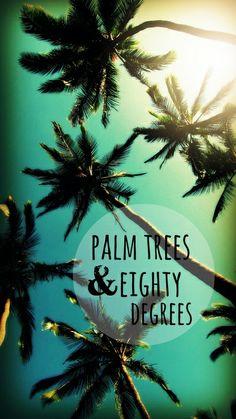 Palm trees & 80 degrees. Maui Art Print
