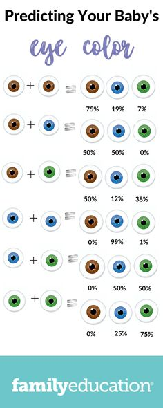 Will My Baby Have Blue Eyes: A Genetic Explanation & Eye Color Chart - FamilyEducation Baby Eye Color Chart, Eye Color Chart Genetics, Baby Chart, Eye Chart, People With Blue Eyes, Baby With Blue Eyes, Blue Eye Kids, Blue Eye Facts, Eyes
