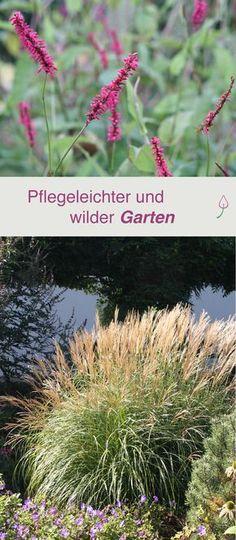Ideen und Vorschläge für Pflanzen, um einen wilden und pflegeleichten Gartenanlegen anzulegen.