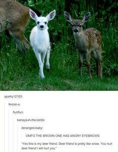 I laughed so hard at this