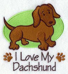 Dachshund..so do we capemaydogs.com