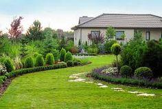 Znalezione obrazy dla zapytania lawenda w ogrodzie