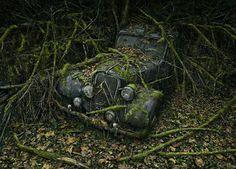O fotógrafo americanoPeter Lippmanncriou um projeto fotográfico documentando belas imagens de carros abandonados em florestas, com a natureza se integrando ao metal organicamente, formando belas paisagens.